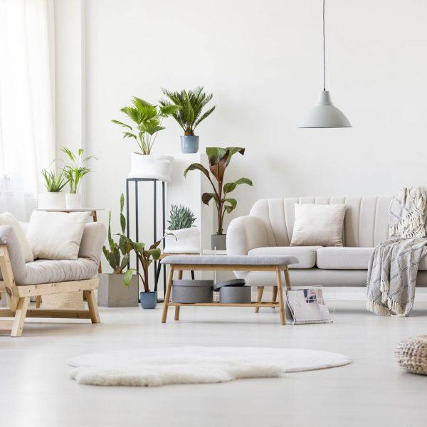 spacious-floral-living-room-P7RS4N5.jpg